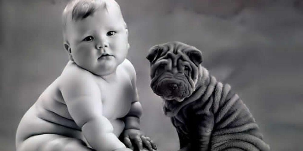 Os bebês mais fofos