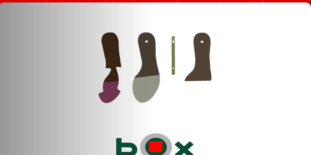 Box Palmilhas