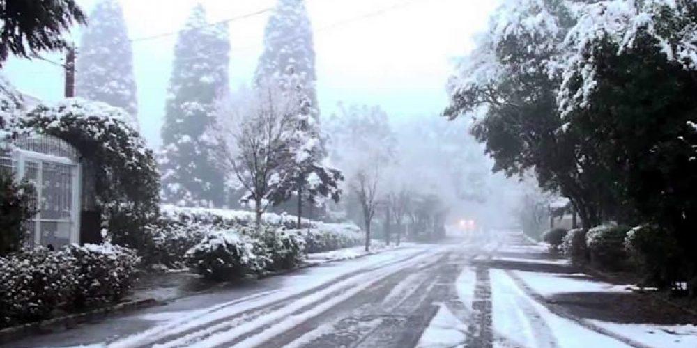 em dias frios que enfrentamos… pensamos em Neve